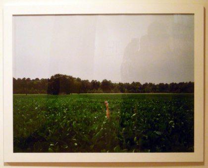 Heidi Norton, Hariett Tubman's Birthplace
